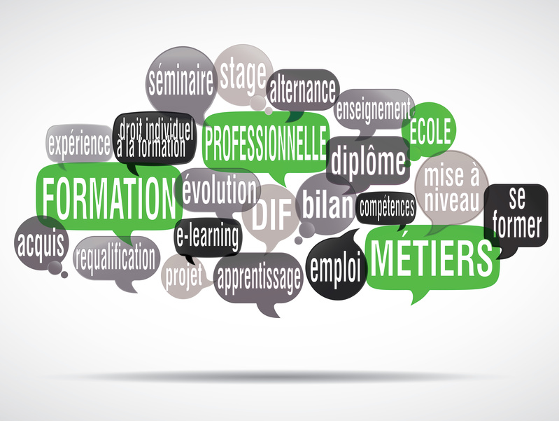 formation de conseiller en insertion professionnelle